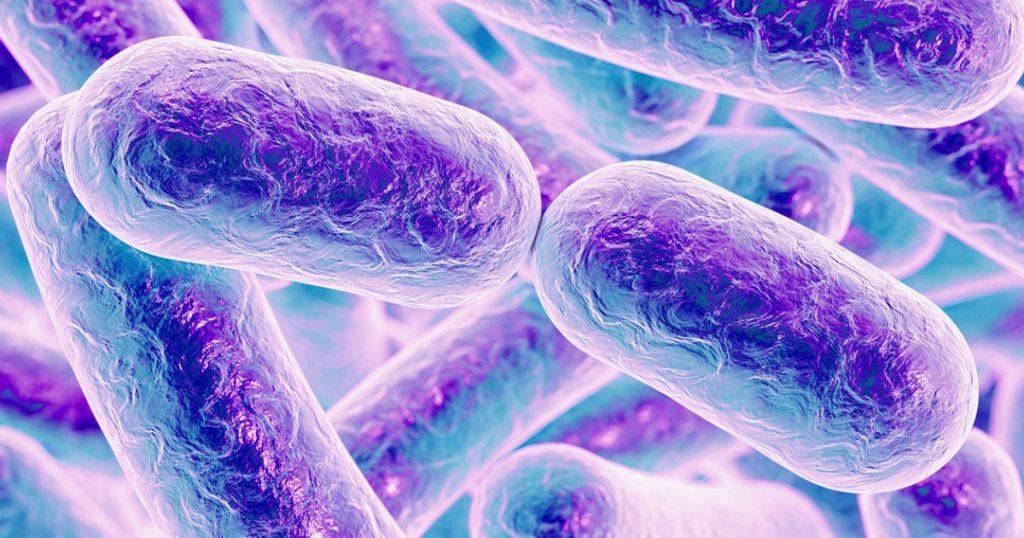 por-que-estudiar-microbiologia-social